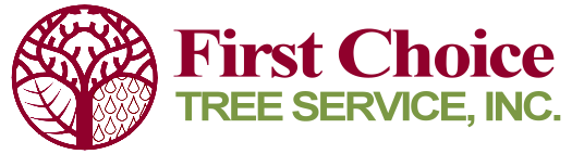 First Choice Tree Service
