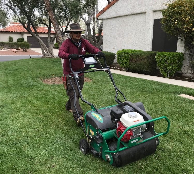 WHAT IS AERATION AND WHY IT'S IMPORTANT TO YOUR LAWN